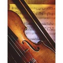 Violin Guarnerius 3/4