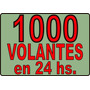 1000 Volantes / Folletos / Flyers En 10x15 Cm. / 24 Hs.!!!!