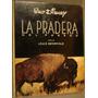 Disney.la Pradera Del Pasado. L.bromfield.fotografías. Perú.