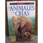 Los Animales Y Sus Crías Biblioteca Billiken Zona Caballito