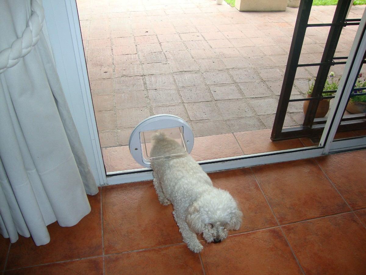 Cachorros en adopcion gratis perros mercadolibre argentina for Puertas para mascotas
