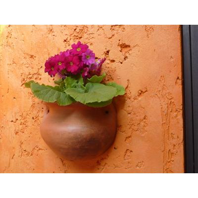maceta de pared de barro artesanal
