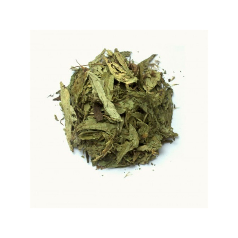 Cha em Planta de Stevia - Kit 2 x 40g - DiCastro