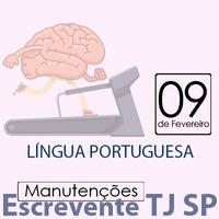 TJ SP Escrevente - Manutenção VUNESP Língua Portuguesa