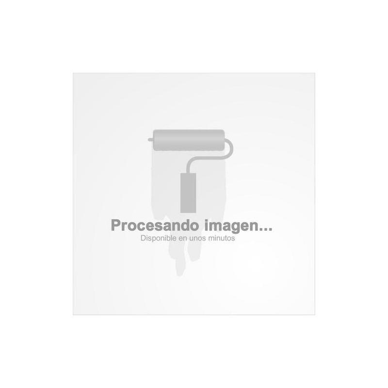 255-40 R17 Bridgestone Potenza RE 050A1