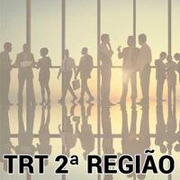 Revisão Avançada de Questões Técnico Judiciário AA TRT 2 SP Direitos das Pessoas com Deficiência 2018