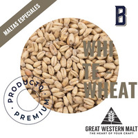 Malta WHITE WHEAT (GWM) kit cerveza artesanal, 1kg.