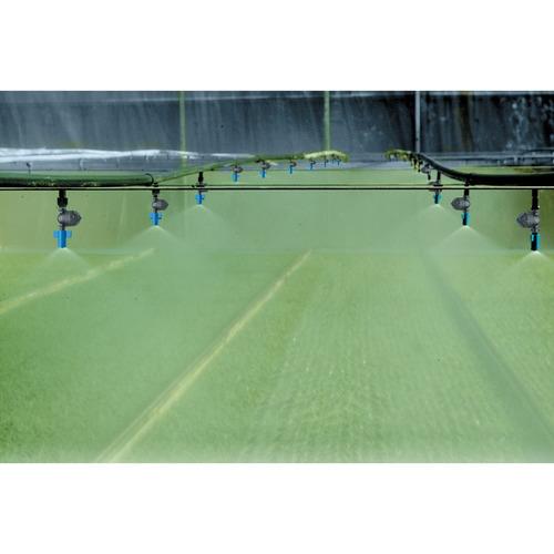 Nebulizador Niebla Riego Green Mist Naandanjain Aquaflex