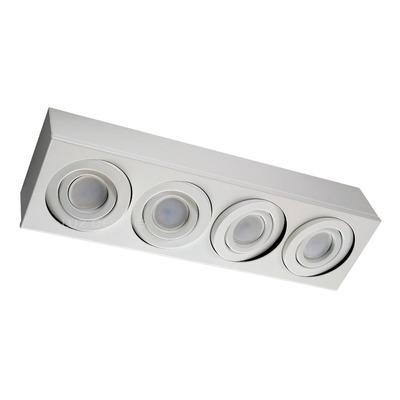 Plafon 4 Luces Cardanico Blanco Lineal Apto Led Gam 4814