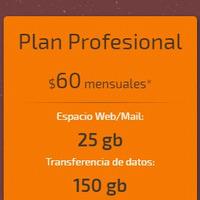 Plan Profesional