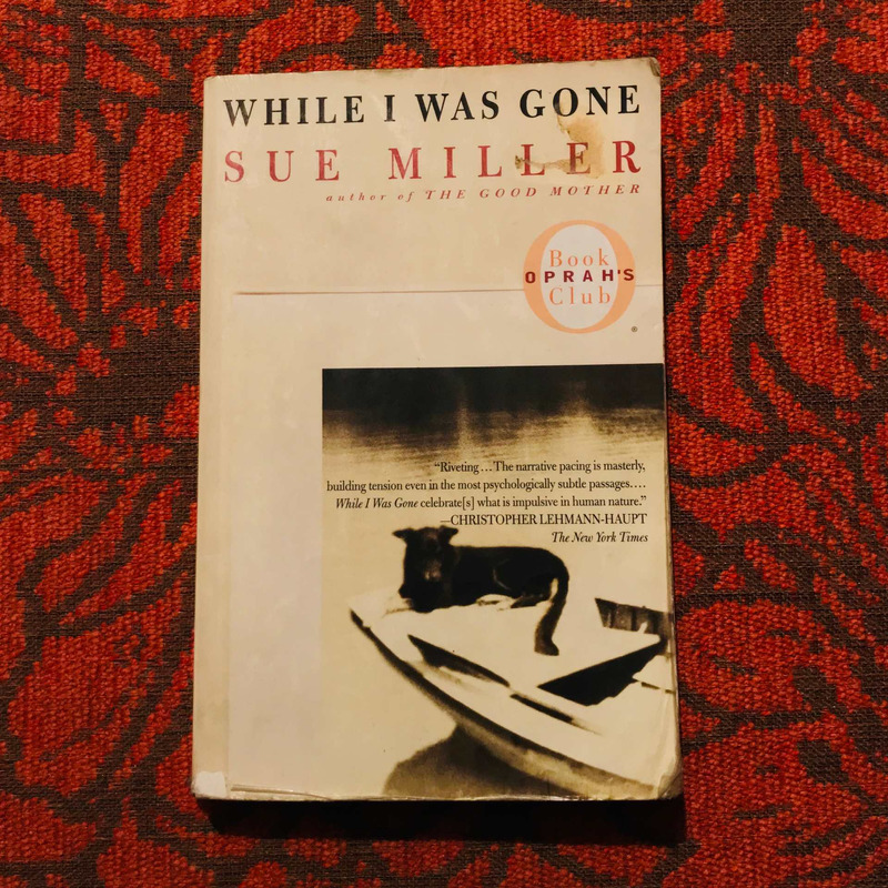 Sue Miller. WHILE I WAS GONE.