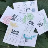 Kit Calendario Plantable 2019 - Papel Reciclado con semillas