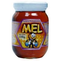 Mel Florada Silvestre - 330g Pinhalzinho