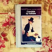 Voltaire.  CANDIDE.  Libro en inglés. Usado.