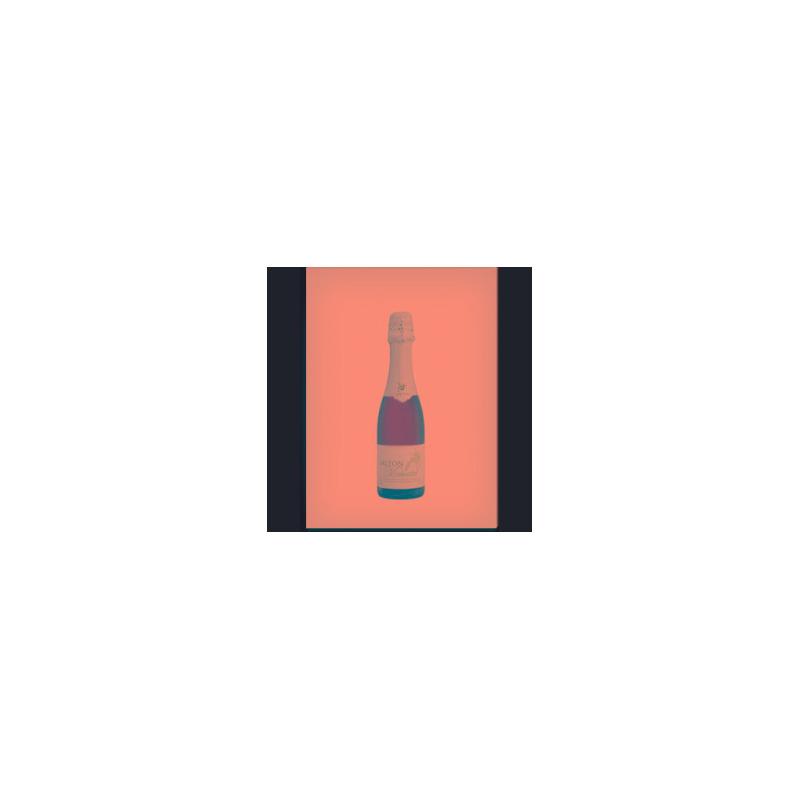 Espumante Moscatel 375ML - Salton