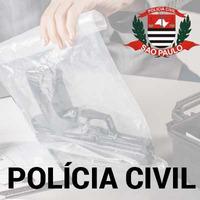 Curso Escrivão Polícia Civil SP