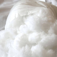 Enchimento fibra siliconada 2kg