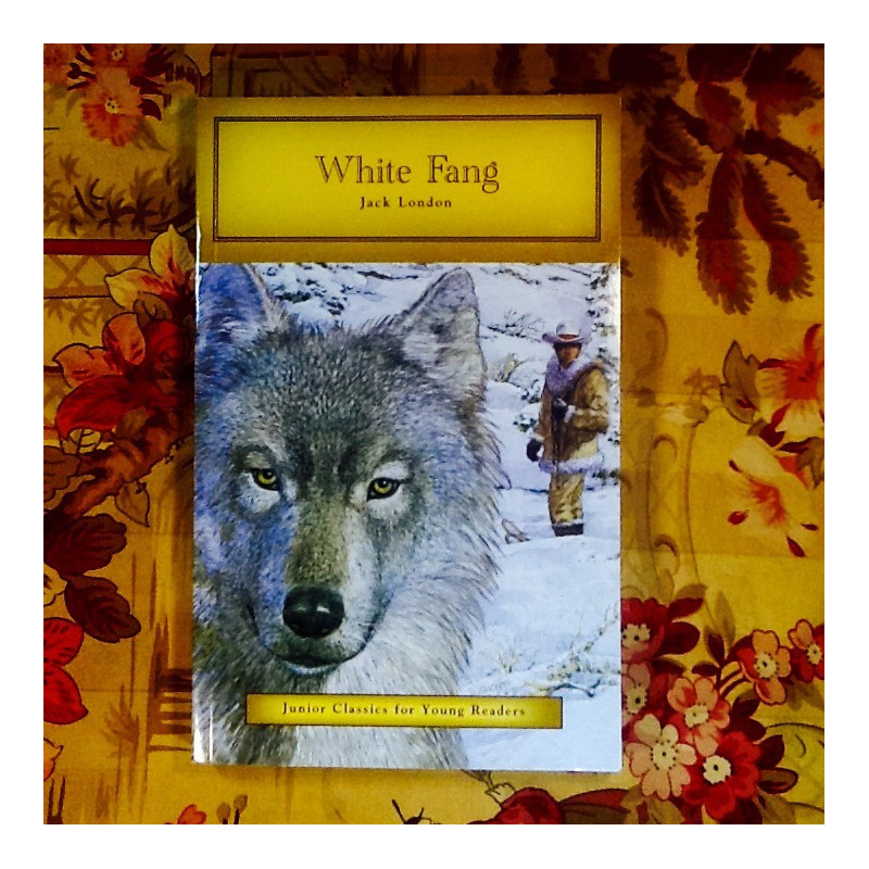 Jack London.  WHITE FANG (simplificado).